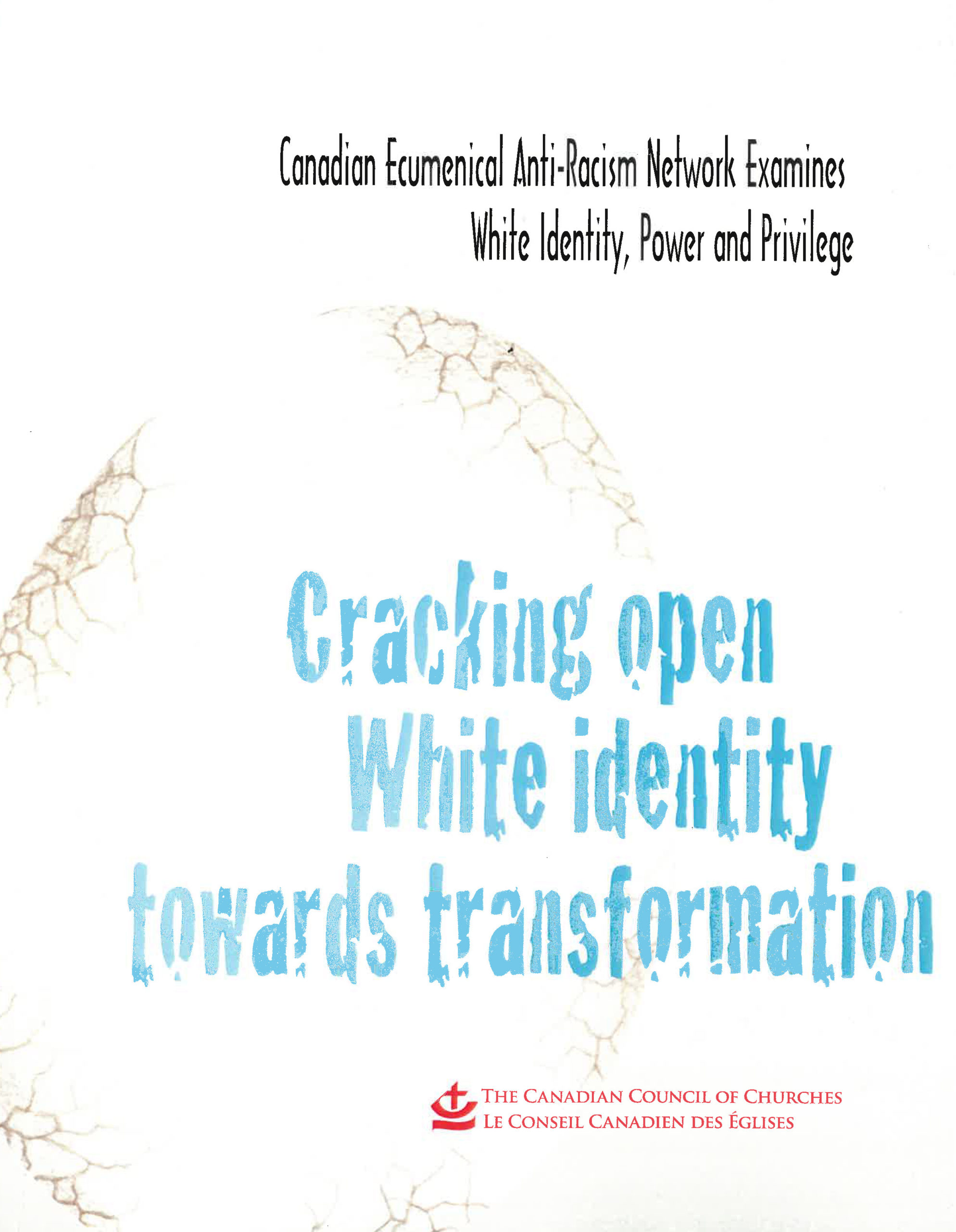 Book Cover: Cracking open White identity towards transformation