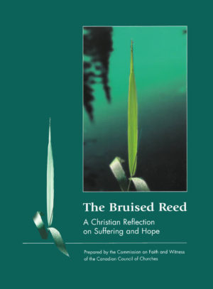 Book Cover: The Bruised Reed: A Christian Reflection on Suffering and Hope